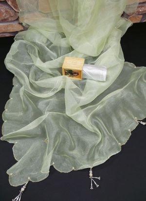 Jardosi Hand Work Light Green Saree