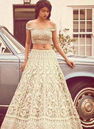 Latest Chiku Embroidered Net Lehenga Choli