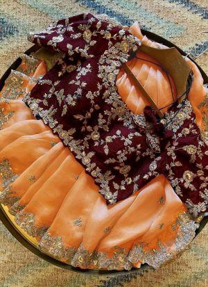 Orange Organza Sequence Work Saree