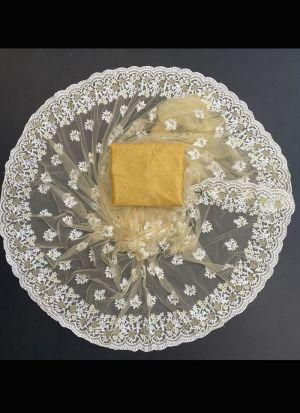 Soft Nylon Mono Net Beige Saree