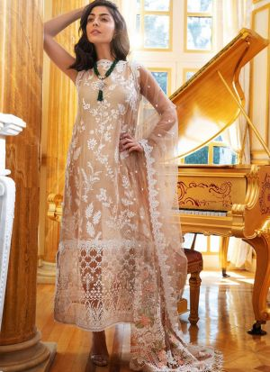 Authentic Pastel Organza Salwar Suit