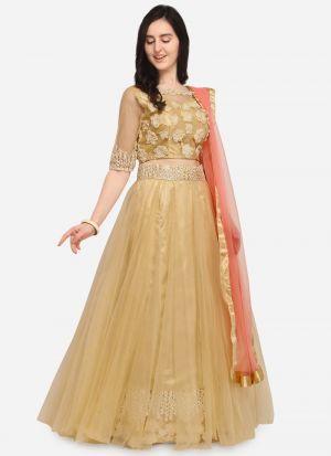 Beige Net Indian Wedding Lehenga Choli