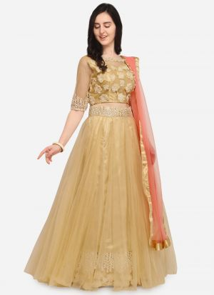 Beige Net Indian Wedding Lehenga Choli