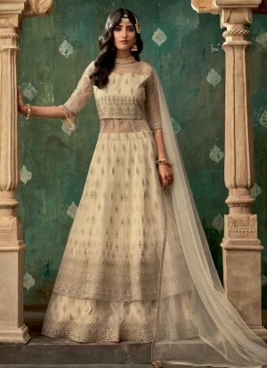 Beige Net New Launching Lehenga Style Dress For Bridal