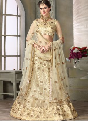 Beige Net Traditional Lehenga Choli