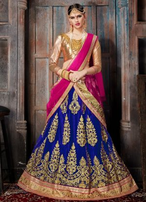 Blue Net Traditional Lehenga Choli