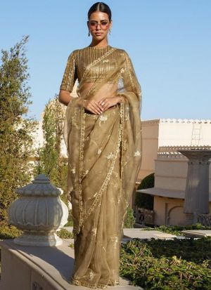 Pure Organza Silk Chiku Color Celebrity Wear Saree